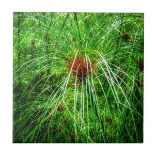 沼地の草 タイル