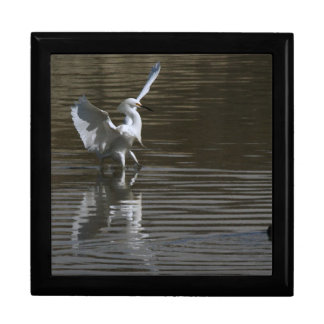 沼地の鳥の野性生物動物の写真撮影 ギフトボックス