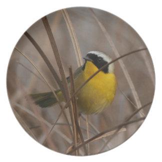 沼地の鳥の野性生物動物の非難 プレート