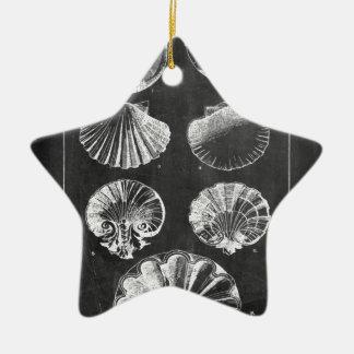 沿岸フランスのな植物の芸術の黒板の貝殻 セラミックオーナメント