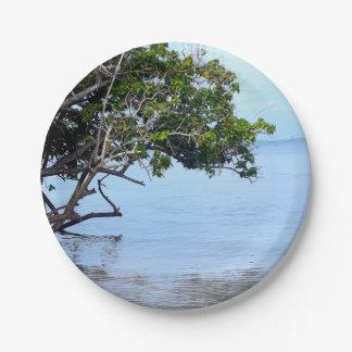 沿岸木の熱帯眺め ペーパープレート