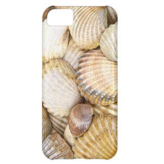 沿岸海岸に沿うビーチの海の貝の山 iPhone5Cケース