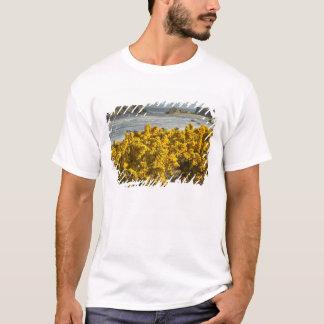 沿岸眺め、Bandon、オレゴン2 Tシャツ