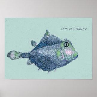 沿岸-ヴィンテージの熱帯魚 プリント