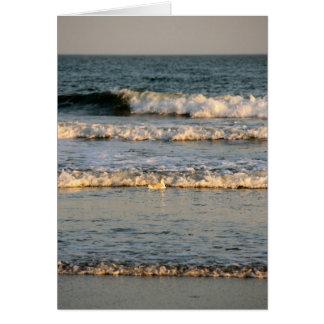 波および隠れるカモメ カード