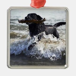 波を通る黒いラブラドル・レトリーバー犬のランニング、 メタルオーナメント