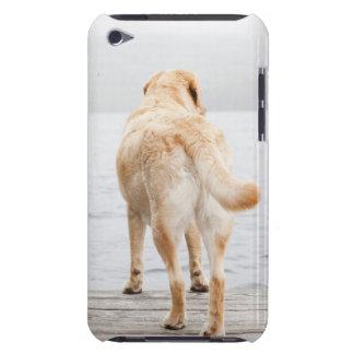 波止場の犬 Case-Mate iPod TOUCH ケース