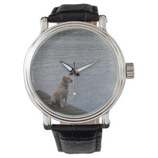 波止場の野良犬 腕時計
