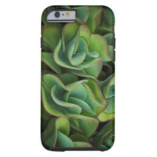 波状の緑のSucculent ケース