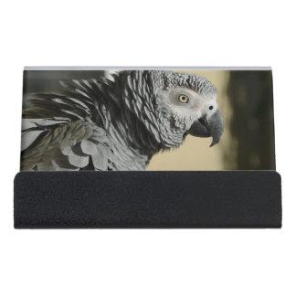 波立たせられた羽を持つコンゴのアフリカ灰色のオウム デスク名刺ホルダー