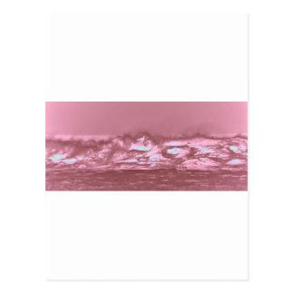 波 ポストカード