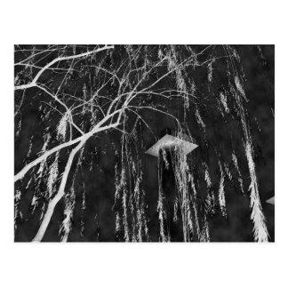 泣く木の逆の陰性の下のコラム ポストカード