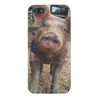 泥のコブタのiphoneの場合 iPhone 5 カバー