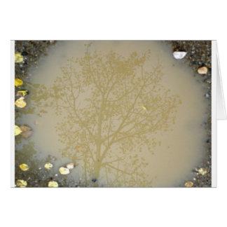 泥の《植物》アスペン カード