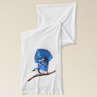 注意深いアオカケスの鳥のスカーフ スカーフ