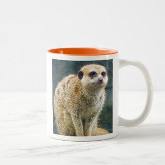 注意、カンザスシティの動物園のかわいいMeerkat ツートーンマグカップ