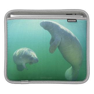 泳いでいる組のフロリダのマナティー iPadスリーブ