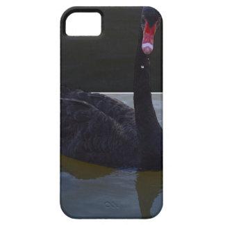 泳ぎました、_Droplet_In_Pond、_ iPhone SE/5/5s ケース