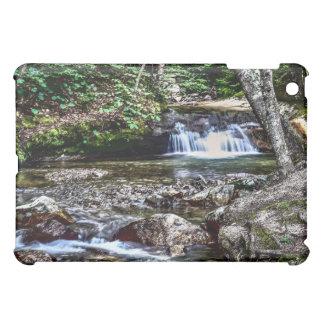 洗面器Franconiaニューハンプシャー iPad Miniケース