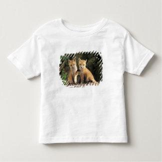 洞穴のVulpesのvulpesの前のアカギツネの子犬) トドラーTシャツ