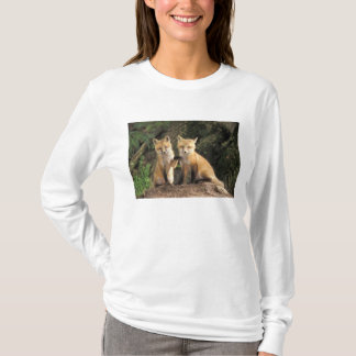 洞穴のVulpesのvulpesの前のアカギツネの子犬) Tシャツ