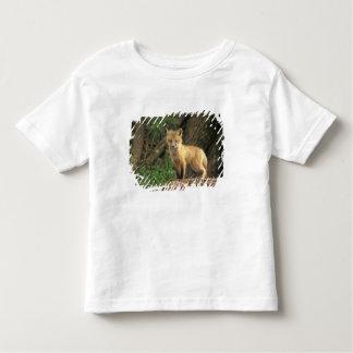 洞穴(Vulpesのvulpes)の前のアカギツネの子犬 トドラーTシャツ