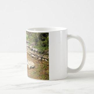 洞窟の春の入り江 コーヒーマグカップ