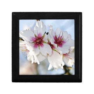活気付くアーモンドの花のギフト用の箱 ギフトボックス