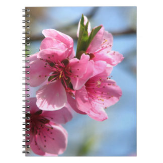 活気付く木のノート ノートブック