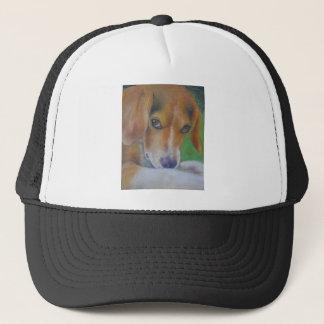 活発な犬:  目 キャップ