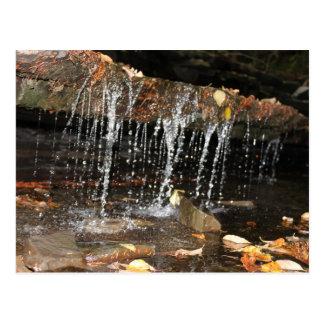 流れる水秋 ポストカード