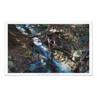 """""""流れ""""、滝の自然の装飾 フォトプリント"""