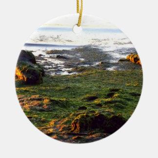 流木および海藻 セラミックオーナメント
