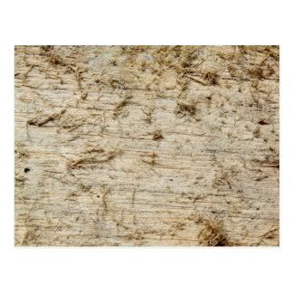 流木のイメージ ポストカード