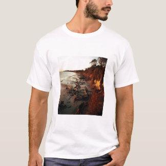 流木の日没 Tシャツ