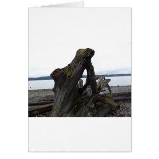 流木 カード