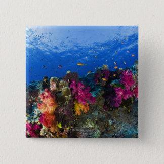 浅い礁、フィージーの柔らかい珊瑚 5.1CM 正方形バッジ