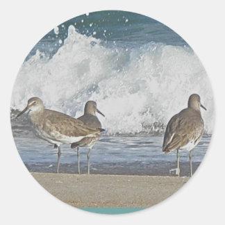 浜鳥のトリオのステッカー ラウンドシール