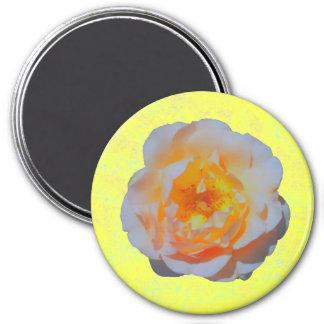 浮遊ばら色の磁石 マグネット