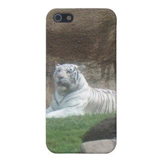 浴する白いトラのiphone 4ケース iPhone 5 カバー