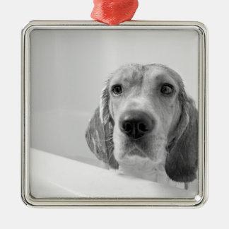 浴槽のビーグル犬 メタルオーナメント