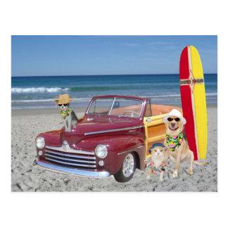 海かビーチまたはサーフィンまたはWoodie ポストカード