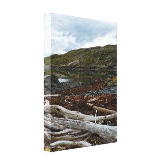海にある死んだ木 キャンバスプリント