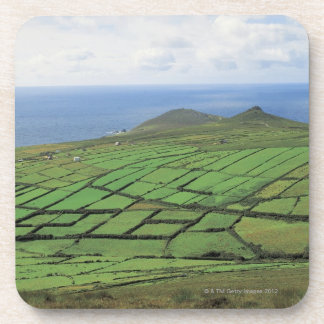 海による農地の空中写真 コースター