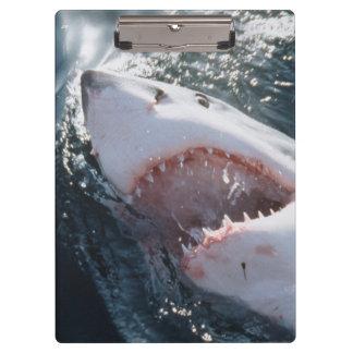 海のホホジロザメ クリップボード