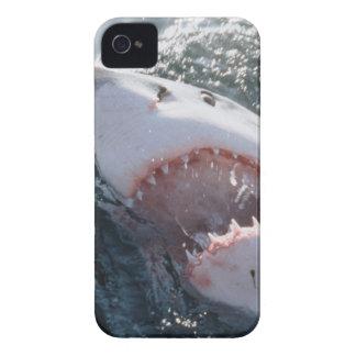 海のホホジロザメ Case-Mate iPhone 4 ケース