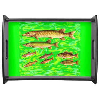 海の余りにも多くの魚 トレー