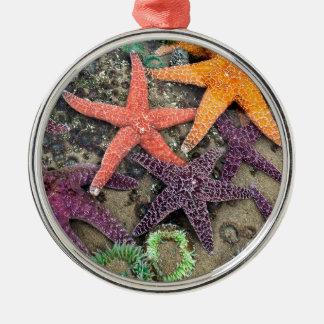 海の宝石 メタルオーナメント