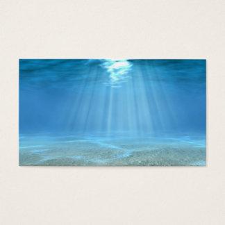 海の日光 名刺