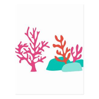 海の珊瑚 ポストカード
